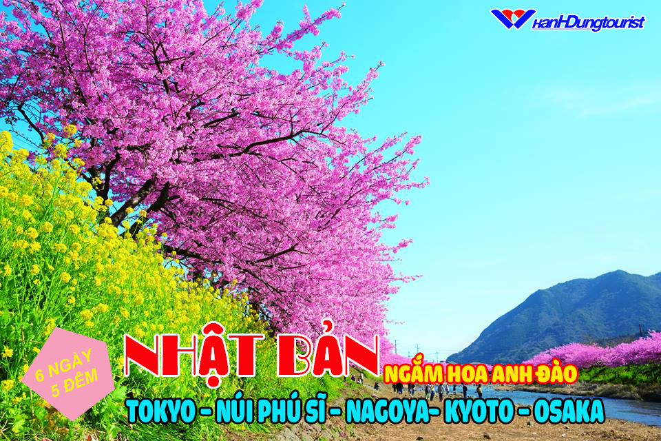 hinhdangfacebook nhatban6