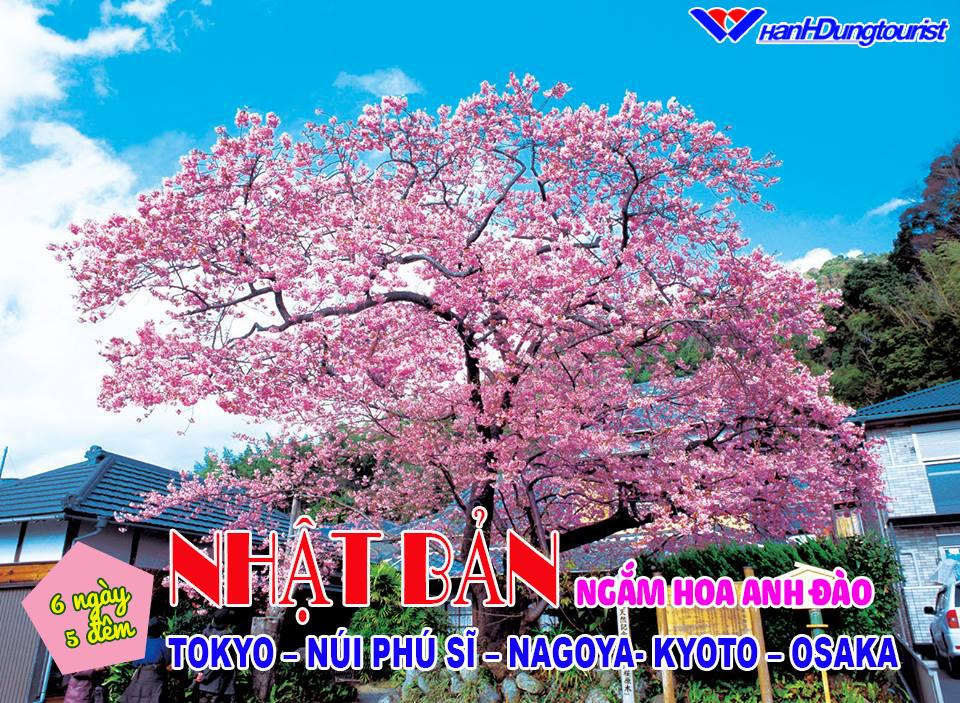 hinhdangfacebook nhatban7